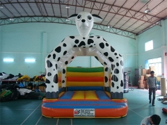 13 Bouncer dalmata del piede