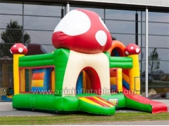 multi play bouncer